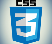 css3 Our Expertise