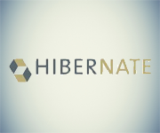 hibernate orm Our Expertise