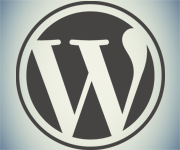 wordpress Our Expertise