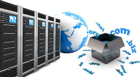 Web Domain & Hosting