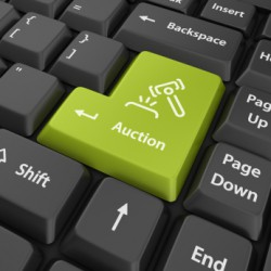 Auction Bidding System